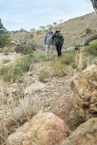 FlindersBushRetreats040817-0660